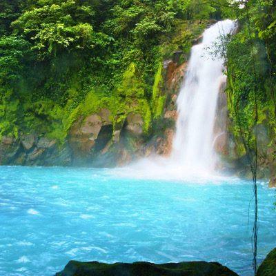 Río Celeste Waterfall and Rainforest Hike