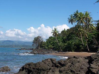Coco Beach Tours