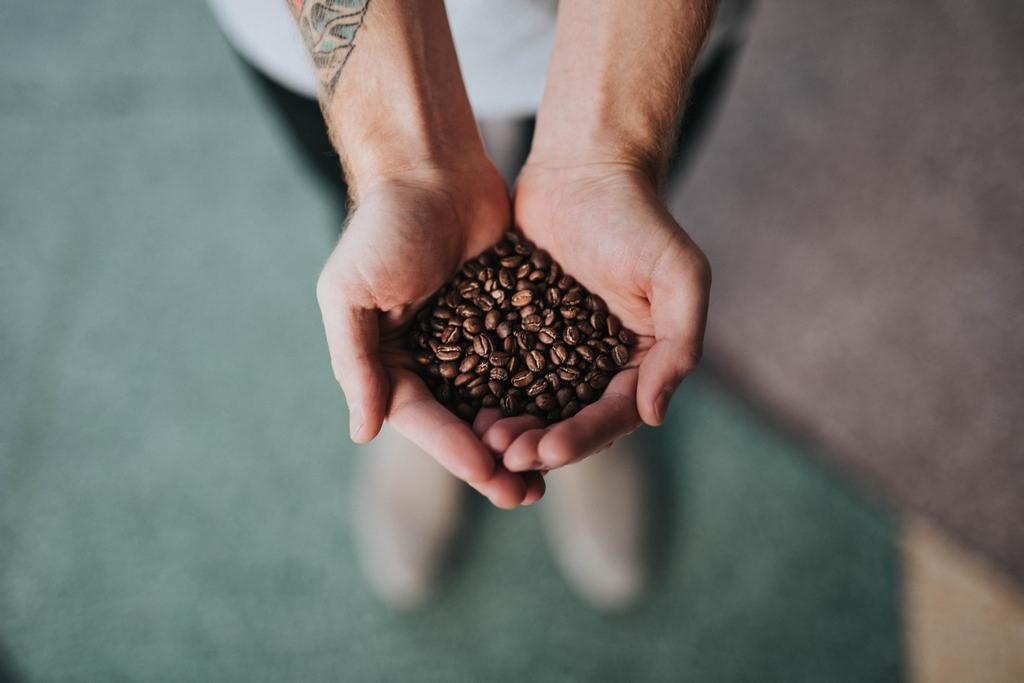 Costa Rican Coffee Tours